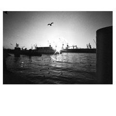 analog. Hafen Hamburg 2011