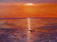 Seagull at sunset, Acrylic on canvas, 30 x 40