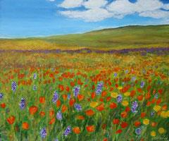 Sommerwiese, Acryl auf Leinwand, 46 x 55
