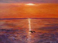 Möwe im Sonnenuntergang, Acryl auf Leinwand, 30 x 40