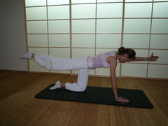 Training der Rückenmuskulatur