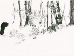 Streifzüge_Waldweg 2_2017_Tusche auf Papier_24 x 32 cm