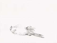 Streifzüge_Waldweg 6_2017_Tusche auf Papier_24 x 32 cm