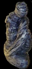 Blue volute
