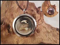 Bild 6: Fell und Zähnchen zusammen eingefasst, die Rückseite ziert ein Foto. Preis: 50 Euro