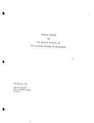 RONNIE ROCKET • scénario de David Lynch • 1991 • scénario traduit pour CIBY 2000