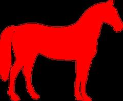 Physio-Doc Rezepturen für das Pferd