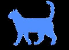 Physio-Doc Rezepturen für die Katze