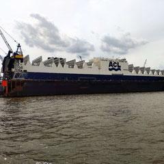 Unterwegs auf der Elbe.