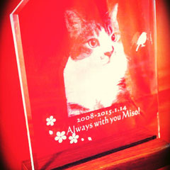 ペット 犬 猫 位牌 メモリアル 写真 彫刻 オーダーメイド 格安 製作 東京 オーダー オリジナル