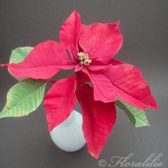 Weihnachtsstern aus Zucker 2011 von Floralilie