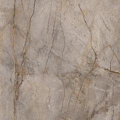 APAVISA WILD FOREST #apavisa #tiles #stone #naturalstone #inspiration #interiordesign #floortiles #architecture #fliesen #fliesendesign #bodenfliesen #dahofawoas #emanuelhofer