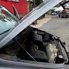 Kräftig und verbrauchsgünstig zugleich der 3.7ltr V6 Magnum Motor.