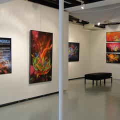 Exposition Nebulae, Musée Borda, Dax.