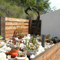 collection cactus gite Pays Cathare Gites de France dans l'Aude à Fenouillet du Razes