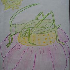 """Ілюстація до вірша Дж. Кітса """"Про коника та цвіркуна"""" учениці 5 класу Романич Галини"""
