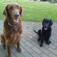 Iro und Day - der grosse *Bruder* ist coll findet Day