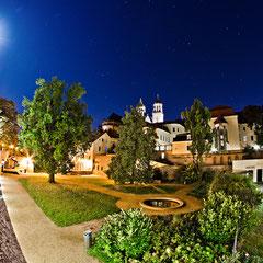 Garten der Möllenvogtei am Dom zu Magdeburg St. Mauritius und Katharina im Mondschein