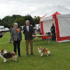 Belgian Shepherd Dog Club of Ireland Group Ch Show- Left : Best Of Breed  JAPARO DESIGNED TO DAZZLE AT LONGRANGE CJW11 JUN CH (Mrs. C Dunne) Right : GS Bitch LONGRANGE SCARLET OHARA JUN CH (Mrs. C Dunne)