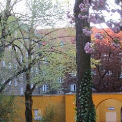 Linden am Neptunbrunnen