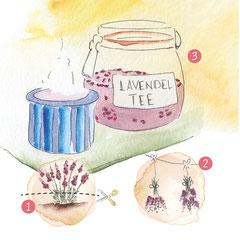 Der Wachsende Kalender für Kinder ist gespickt mit naturnahen Aktivitäten, wie zum Beispiel das Erstellen von Lavendeltee.