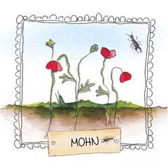 Jeden Monat wird eine Pflanze von Kopf bis Fuß (Blüte bis Wurzel) vorgestellt. Die jeweiligen Samen zur Pflanze, sind im Kalenderblatt integriert.