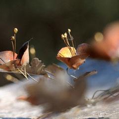 Fleurs en cuivre, détail - Photo : Gabrielle Voinot