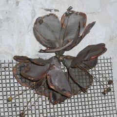 Fleur toile d'inox