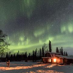 Nordlichter über der Goldstream Husky Lodge - Photo by Markus Trienke