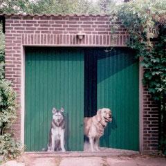 ...wird zur Illusion eines halboffenen Flügeltors, bewacht von zwei aufmerksamen Hunden.