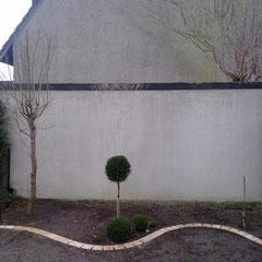 graue Wand im noch kahlen Garten