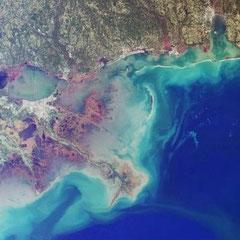 Estuaire du Mississipi