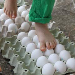 Experimente in den Ferien: Eier scheinen so zerbrechlich! Aber man kann über rohe Eier trotzdem laufen. Pure Physik.