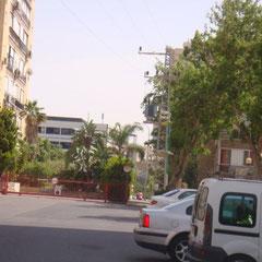 Rue avec parc