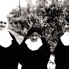 Suor Maria Minima e Consorelle nel viale del Monastero a Firenze anni '50