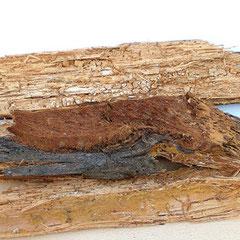 Zerstörtes Holz durch Hausschwamm