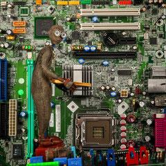 ein Spion in deinem Rechner