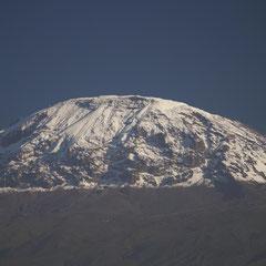 Der Kilimandscharo war durch Niederschläge am Vortag mit frischem Schnee bepudert.