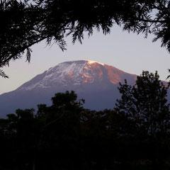 Sonnenaufgang am Kilimandscharo: Vier Tage später hat die afrikanische Sonne trotz des tagsüber immer aufziehenden Wolken-Sonnenschutzschirms erhebliches Abschmelzen bewirkt.