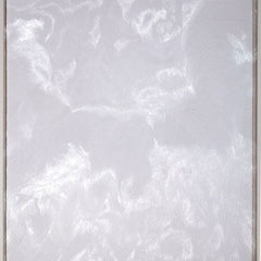Untitled-6 Drypoint on PETG plate 90x120cm,2010