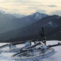 Vor den Bergen Österreichs