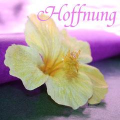 Hier klicken um zu dem Gedicht, Hoffnung, zu gelangen