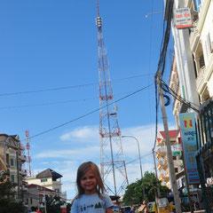 die TV-Antenna