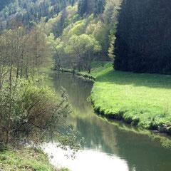 Schwarzwald - das romantische Würmtal bei der Häckermühle