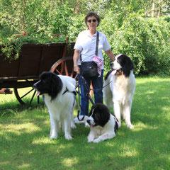 Eine kleine Frau mit großem Herzen und einem unnachahmlichen Talent mit den Hunden zu kommunizieren. Danke Monique für diese wunderbaren Hunde
