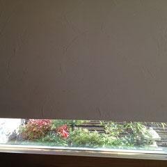 地窓のオタフクナンテン 剪定後