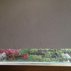 地窓のオタフクナンテン 剪定前