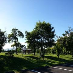 朝RUN 良い天気(^^♪