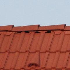 Defektes Hartplastik bei Dachfirst