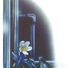 """Nachtblume"" - Honsar - Acryl-Mischtechnik auf Leinwand - 40 x 80 cm - 2006 - verkauft / SOLD"